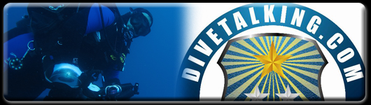 divetalking banner